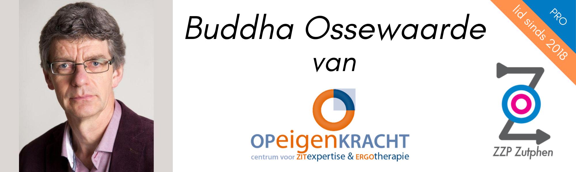 buddha-ossewaarde-op-eigen-kracht-zitexpertise-ergotherapie-zzpzutphen